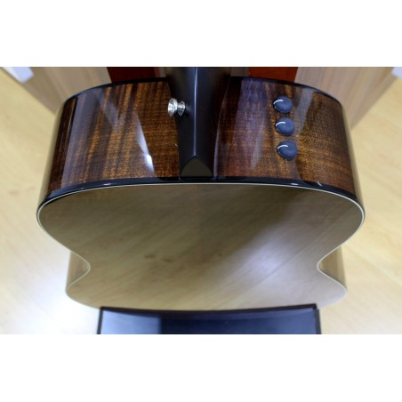 Guitarra Acústica TAYLOR 618e