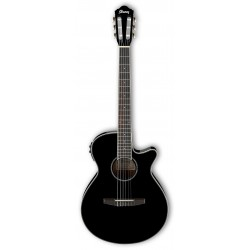 Guitarra Clasica IBANEZ AEG10NII-BK