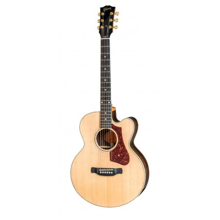 Guitarra Acustica GIBSON Parlor Rosewood AG 2018