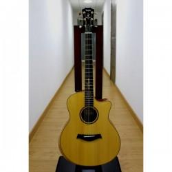 Guitarra Acustica y Amplificador TAYLOR BR-III Acoustic Guitar  Amp Set Foto: \192