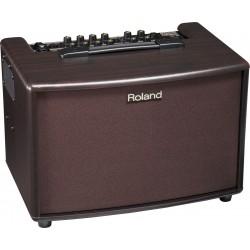 Amplificador ROLAND AC60 RW Foto: \192