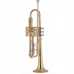 Trompeta J. MICHAEL TR-200 Foto: \192