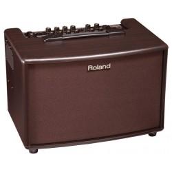 Amplificador acústica ROLAND AC-60 RW