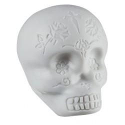 Shaker LP LP006-GLO Sugar Skull White Foto: \192