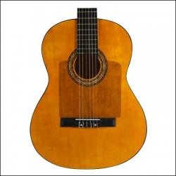 Golpeador Guitarra ORTOLA 2659 completo con forma transparente Foto: C:QuerryFotos WebGolpeador Guitarra ORTOLA 2659 completo co