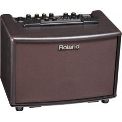 Amplificador ROLAND AC-33 RW