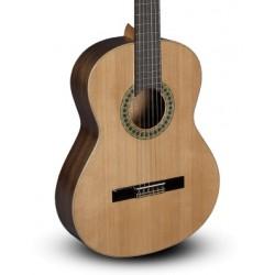 Guitarra Clasica PACO CASTILLO 201 (Brillo) Foto: C:QuerryFotos Web\Guitarra Clasica PACO CASTILLO 201 (Brillo)