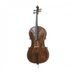 Violoncello PALATINO (3/4) B-STOCK