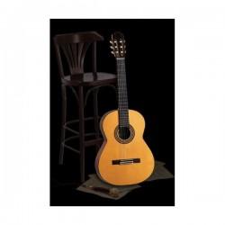 Guitarra Clásica ADMIRA Ávila Foto: \192