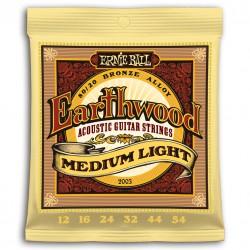 Cuerdas Acustica ERNIE BALL Earthwood Medium Light 2003 (12-54) Foto: \192